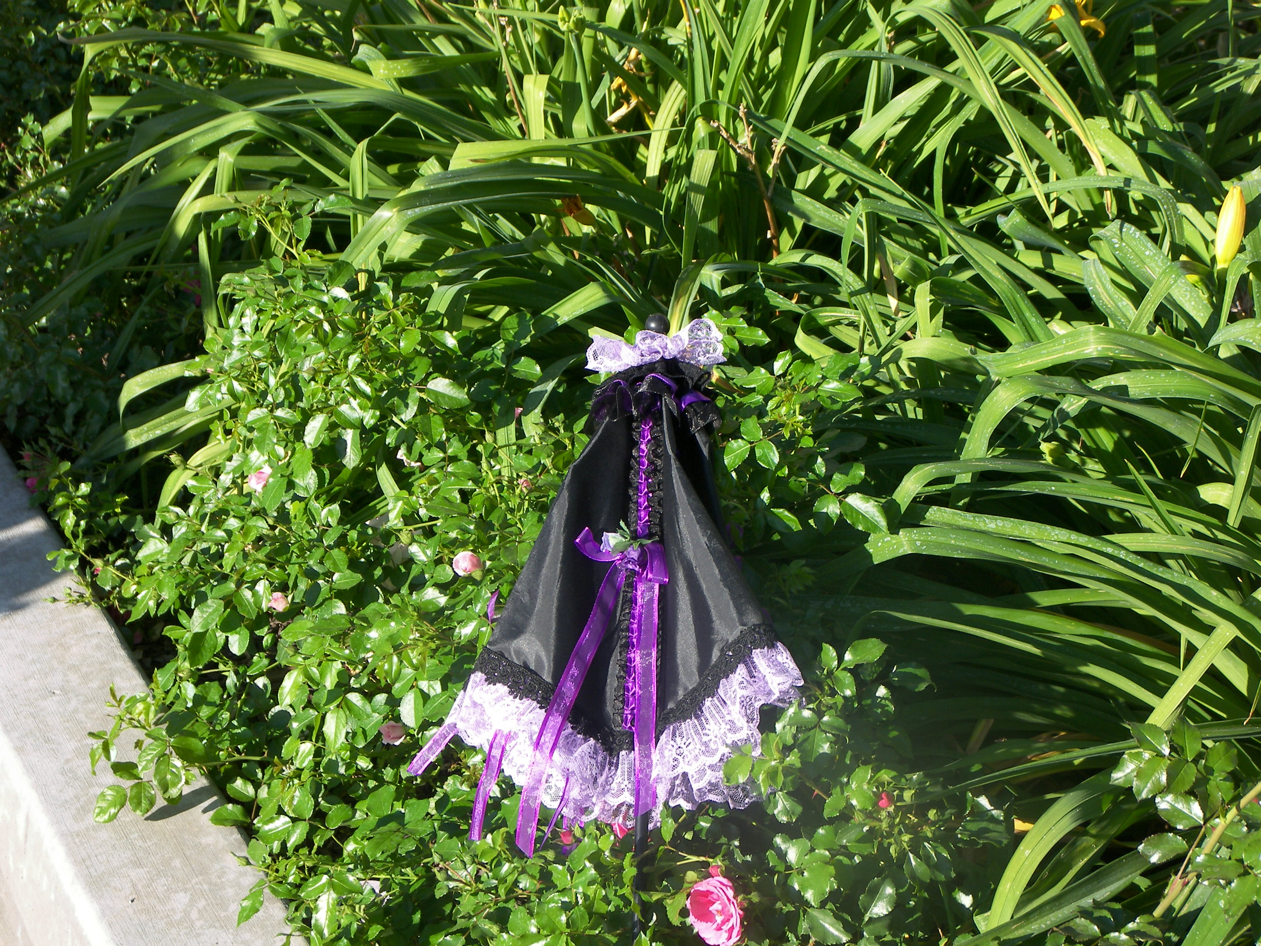KC Dragonfly - Black and Purple parasol - closed and tied